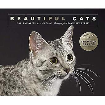 mooie katten: portretten van kampioen rassen
