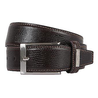 OTTO KERN belts men's belts leather belt dark brown 2257