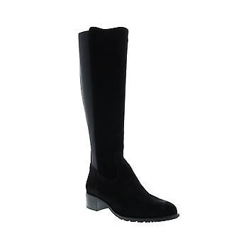 Aquatalia Adult Womens Olidia Suede Elastic Knee High Boots