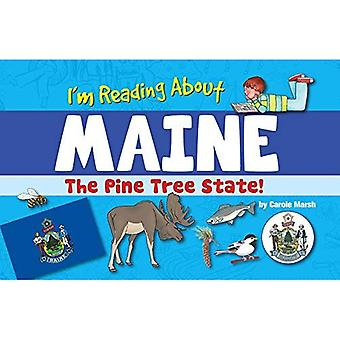 Ich lese über Maine (Maine Erfahrung)