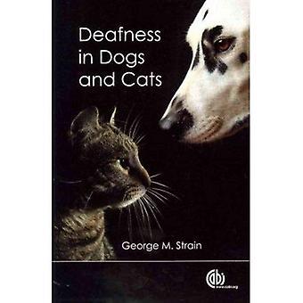 Surdité chez les chiens et chats