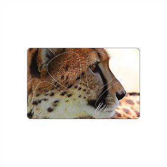 3 PikCard Guitar Picks/Plectrums - Cheetah Multi - Pack of 3 - 12 Picks - Medium 0.75mm
