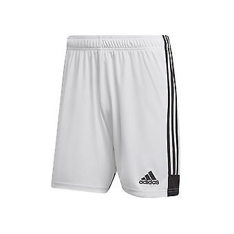 Adidas Tastigo 19 DP3247 školenia celoročné Pánske nohavice