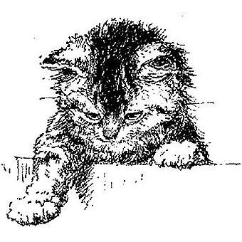 JS Exploring Cat Wood Mounted Stamp