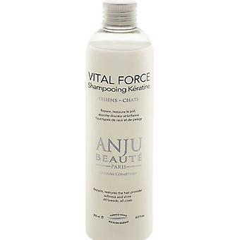 Anju Beauté Shampoo For Dogs And Cats Enriched With Vital Force Keratin