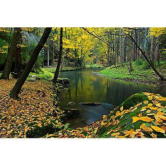 Tapetmaleri Lerkstein med høstblader ved Kamenice-elven i Tsjekkia