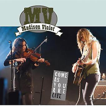 Madison Violet - Live Album/DVD [CD] USA import