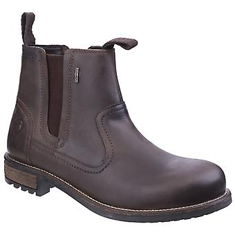 Cotswold Mens Worcester Boot Brown
