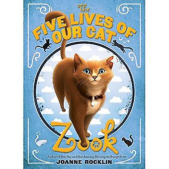 The Five Lives of Our Cat Zook by Joanne Rocklin - 9781419705250 Book