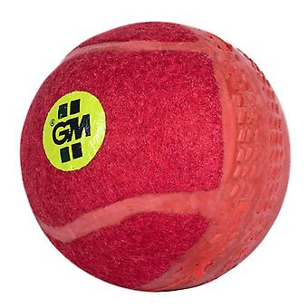 Gunn & Moore Swingking Training Cricket Ball Rot