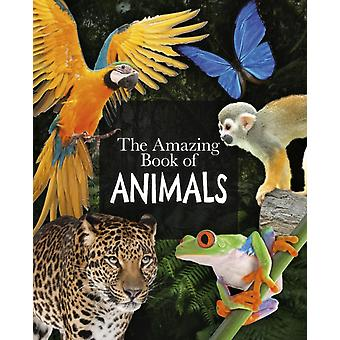Amazing Book of Animals by Michael Lland