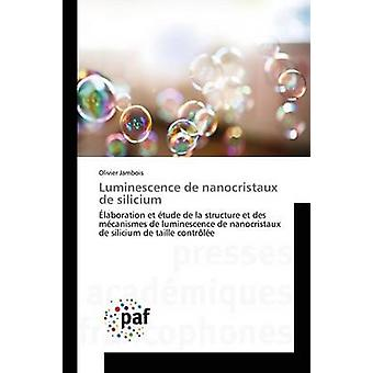 Luminescence de nanocristaux de silicium by Jambois Olivier