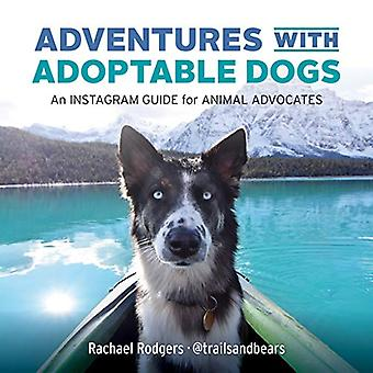 Adventures with Adoptable Dogs - An Instagram Guide for Animal Advocat
