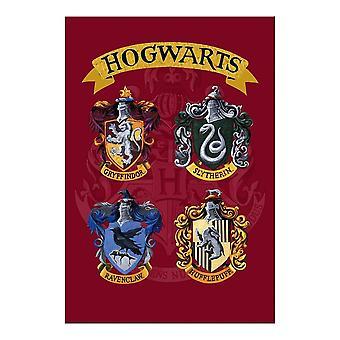 Hallmark Harry Potter Hogwarts Houses Birthday Card 25510128