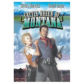 Storfe dronning av Montana [DVD] USA importere