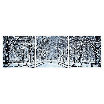 24_quot; 多色画布 3 水平面板 冬季树木照片