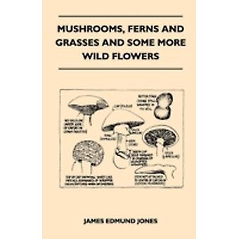 Mushrooms Ferns And Grasses And Some More Wild Flowers by Jones & James Edmund