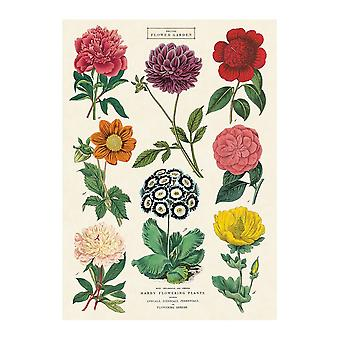 Cavallini Botanica Wrapping Paper / Poster High Quality / Decoupage