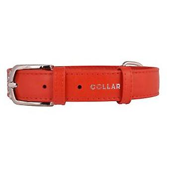 Collar Glamour Leather Collar Red (Dogs , Collars, Leads and Harnesses , Collars)