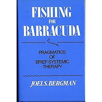 Fiske etter Barracuda: pragmatikk kort systemiske terapi
