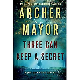 Drie kunt houden een geheim (Joe Gunther Mysteries)