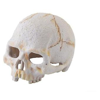 Exo Terra Primaten Nano Fossil Skull (Reptilien , Dekoration , Höhlen und Felsen)