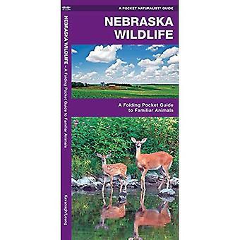 Nebraska Wildlife: An Introduction to Familiar Species (Pocket Naturalist Guides)