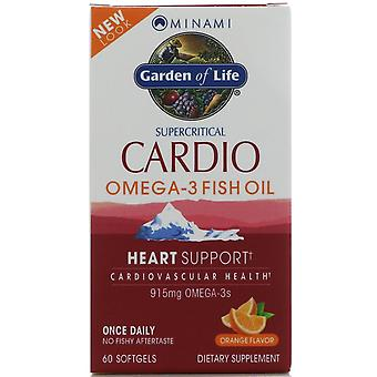 Minami Voeding, Cardio Omega-3 visolie, sinaasappelsmaak, 60 Softgels