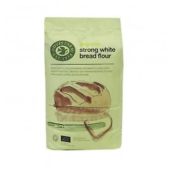 W & H MARRIAGE & SON - Organic Strong White Bread Flour