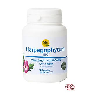 Ecocert certified Organic Harpagophytum - 120 tablets of 250mg 120 capsules