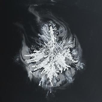 Seabuckthorn - Turns [CD] USA import