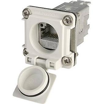 STX V6 RJ45 flens instellen optie 6 RJ45-aansluiting, mount aantal pins: 8P8C J00020A0481 licht grijs Telegärtner J00020A0481 1 PC('s)