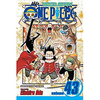 One Piece, Volume 43