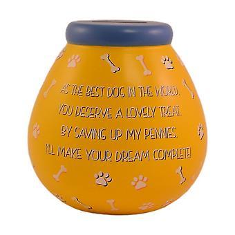 Pots de rêves traitent chien Pot de fonds de fonds