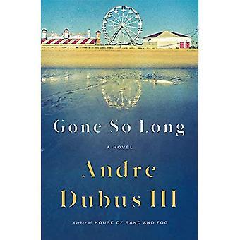 Borta så länge: En roman