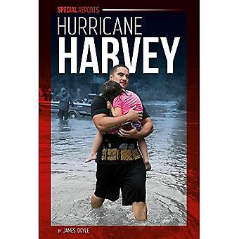 Hurricane Harvey (Special Reports Set 3)