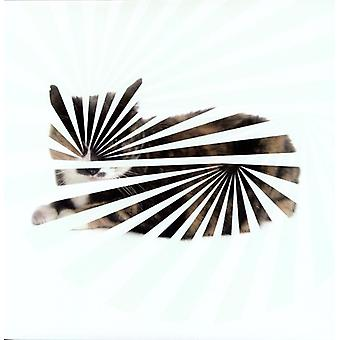 Blow - dålig mål: Love Songs [Vinyl] USA import