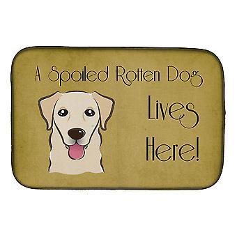 Golden Retriever forkælet hund liv her parabol tørring Mat