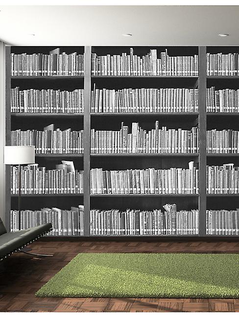 Bookshelf Wall Mural 2.32m x 3.15m
