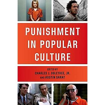 Punishment in Popular Culture by Jr. & Charles J. Ogletree