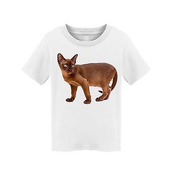 Burmese Cat Looking At Side Tee Toddler's -Image by Shutterstock