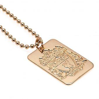 Liverpool Gold Plated Dogtag & chaîne
