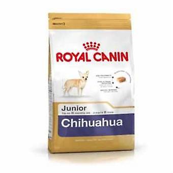 Royal Canin karma dla psów Junior Chihuahua 1,5 kg