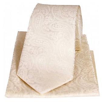 David Van Hagen Tonal Paisley Silk Tie and Pocket Square Set - Ivory