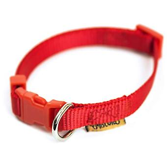 Miscota Nylon Red Collar (Dogs , Collars, Leads and Harnesses , Collars)