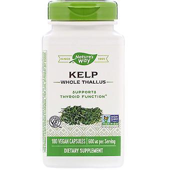 Nature-apos;s Way, Kelp, Thallus entier, 600 mg, 180 capsules végétaliennes