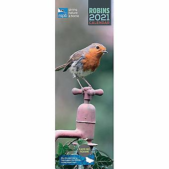 Otter House 2021 Slim Calendar-rspb Robins