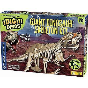 3D Dinosaur Skeleton 20-Piece 2 feet Long Build a T Rex Thames & Kosmos