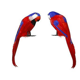 Parrot Pirate Multicolour
