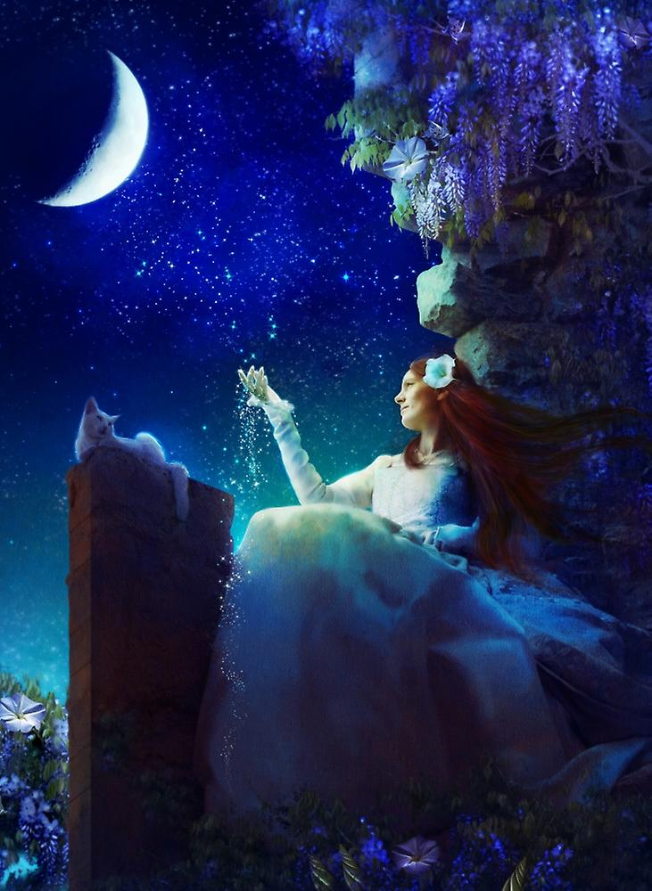 слово фотограф фото волшебный сон этом фото сверху